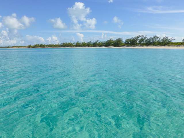 Spectabilis Island