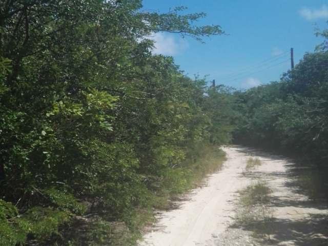 Silver Perch Road