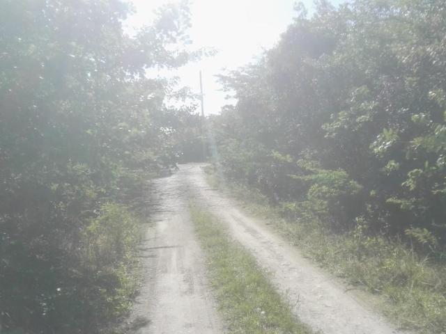 Redfin Drive