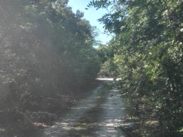 Bahama Sound 9