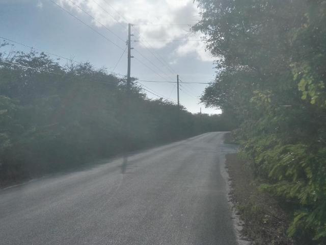 Hartswell Queens Highway