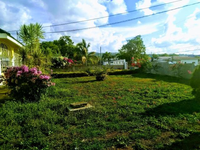 http://images.realtyserver.com/photo_server.php?btnSubmit=GetPhoto&board=jamaica&name=000096E3.L07