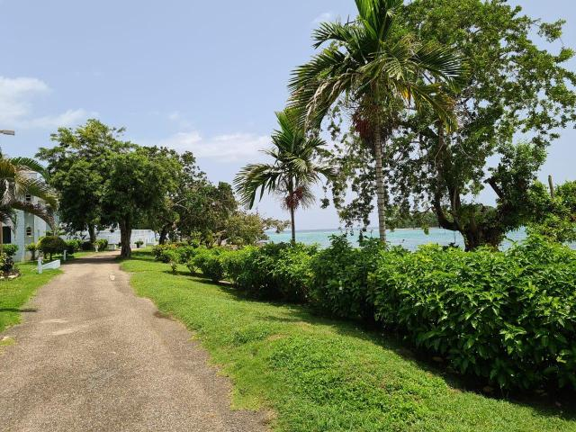 http://images.realtyserver.com/photo_server.php?btnSubmit=GetPhoto&board=jamaica&name=0000AA37.L10