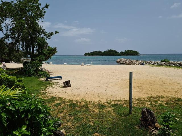 http://images.realtyserver.com/photo_server.php?btnSubmit=GetPhoto&board=jamaica&name=0000AA37.L11