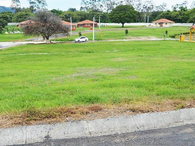 TWO LOTS FOR SALE IN EL CELAJE, CHAME - $60,000