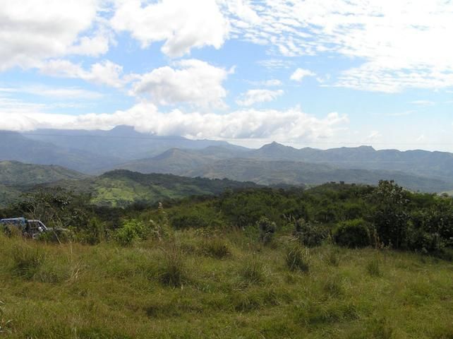 1 Hectare Flat Lot For Sale in Boquete