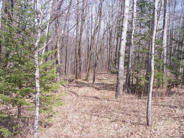 MLS# 156213 - ON SOUTH END RD Merrill WI 54452