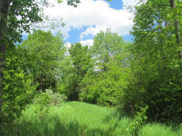 MLS# 158601 - ON TOWN FOREST RD  WI 54424