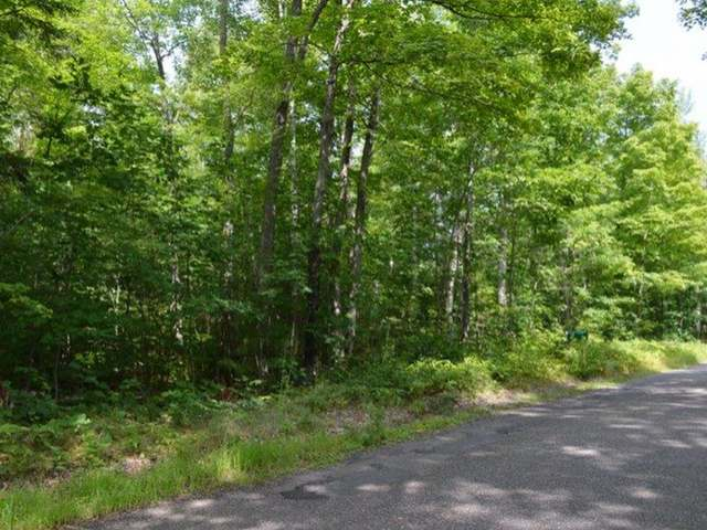 MLS# 161962 - ON DUNER POINT LN Lac Du Flambeau WI 54538