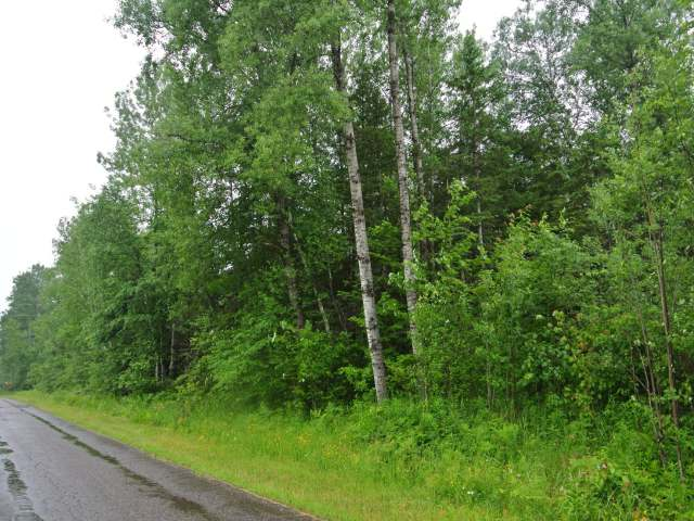 MLS# 166154 - ON MEISTER STOCKLEY RD  WI 54463