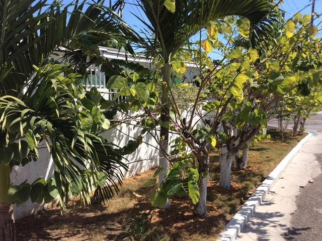 LOT 279 ENSOM ACRES DRIVE