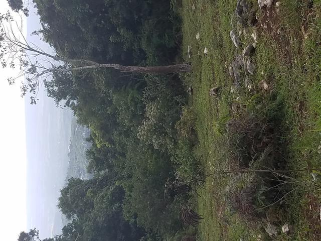 LAND PART OF JAMES MOUNTA
