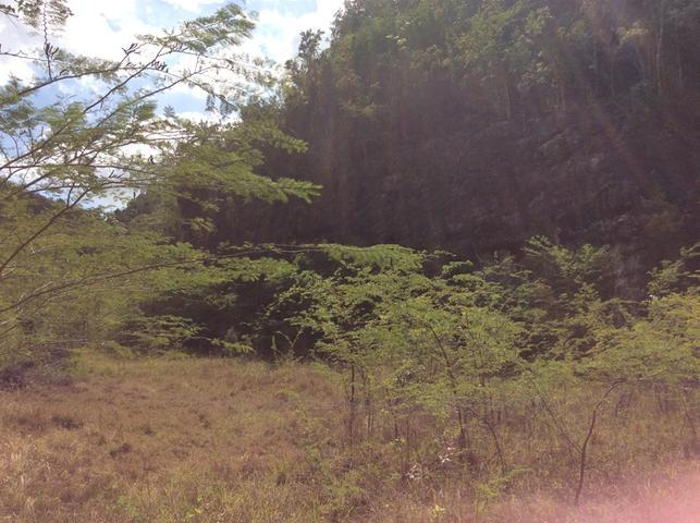 This property is a lifetime investment. Sprawled over 547 acres of land from St. Jago Hills to Cross Pen in Spanish Town. The St. Jago Hills section (acreage undetermined) can be used for residential houses as the area is developed with a number of beautiful homes. The quarry is visible from the Edward Seaga Highway. This property has to be sold with 1.546 acre plot which was purchased for easier access to the quarry. This is listed for J$500,000