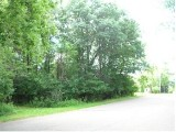 This vacant wooded city lot is located close to Hodag Park and is ready for you to build your new home.  City water, city sewer, telephone, natural gas, Cable TV, and Electric are all available at the road.