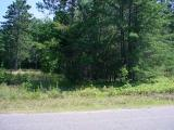 Here is a nicely wooded residential lot just north of Rhinelander in the town of Newbold. The lot is located in a nice neighborhood and utilities are available at the road. The lot is mostly all high ground with a mix of pine & hardwood. This lot is not subject to subdivision rules & restrictions.