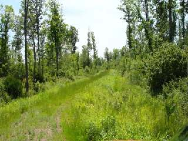 MLS# 147095 - NEAR PETERSON RD  WI 54409