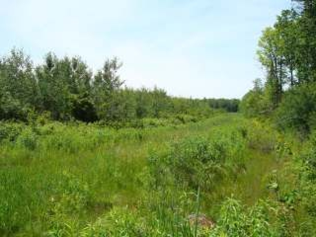 MLS# 147096 - NEAR PETERSON RD  WI 54409