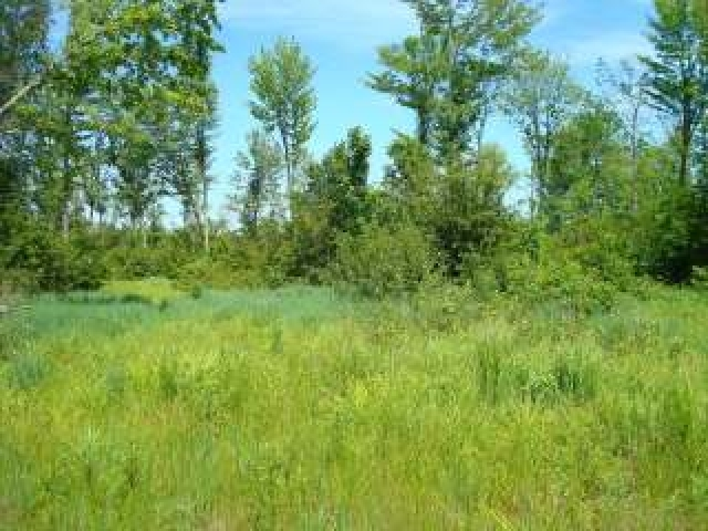 MLS# 147097 - NEAR PETERSON RD  WI 54409