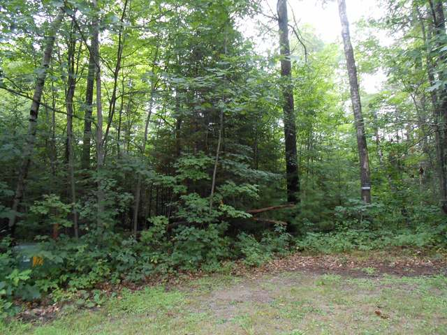 Woodland Acres lot 41 - Very nice lot in a great subdivision - AVW School District - easy access from town rd. - conveniently located for all recreational activities. Lot is at the end of a cul-de -sac and is level and in an area of nice homes.