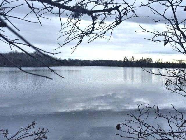 Harris Lake lot picture