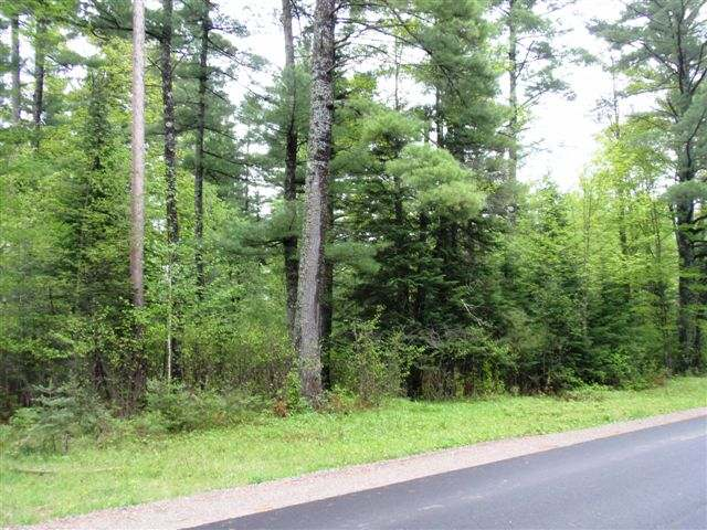 COLUMBUS ROAD VACANT LOT - Pretty wooded and level 1.64 acre parcel located just 7 miles from Eagle River! Easy access off a paved town road, close to the snowmobile trail and all the amenities the Northwood's has to offer, including the Eagle River Chain of 28 Lakes! Cleared driveway in place, electric and phone at road. Wonderful setting for your long awaited dream home or your quaint vacation get-a-way!