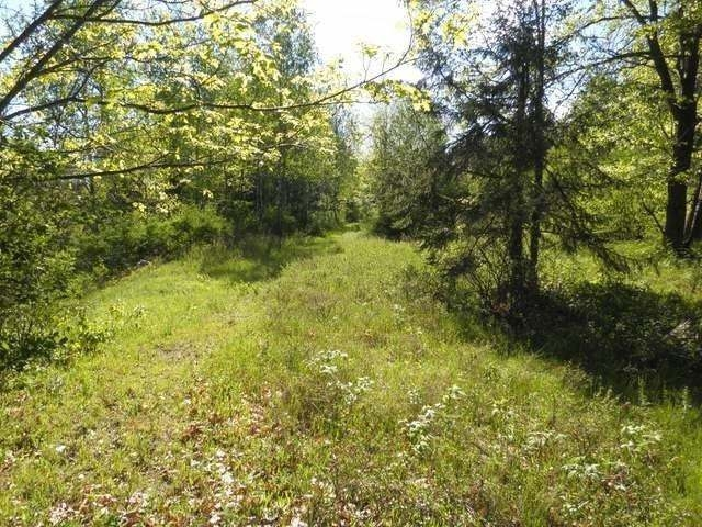 Located just a few miles east of Rhinelander on Old 8 is the perfect private setting for your new home or cabin. This 5 acre parcel has a 3.5 acres on the north side of the road with a level building site & a deer stand already up. On the South side of the road is another building site with potential for walk out basement and 1.52 acres of land. Lake George is minutes away for fishing and boating. This property is surveyed and ready for your future home. Seller is motivated.