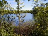 A special offering could be yours today! Here is a 5.37 acre parcel bordered by 300' of frontage on Lower Sugarbush Lake on the west end (facing SE) and 340' of creek frontage on the east end. Located on the clear Sugarbush three lake chain, one finds over 500 acres of tremendous fishing, great paddling waters, and Canadian-like scenery with much undeveloped shoreline. Watch the Eagles soar. Observe the turtle nurseries. This property is close to the State owned Powell Marsh Wildlife area and snowmobile trails that run north to Mercer and Manitowish Waters. Summer or winter, there is much to enjoy owning this private, nicely wooded site.