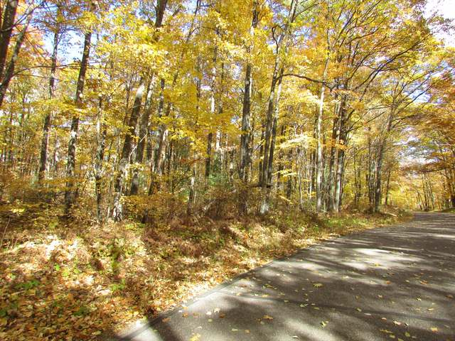 Looking for a home or cabin building site that's just a short drive from town for convenience, but is in a quiet, private area? This gently rolling, nicely wooded with lot offers 6.5-acres for privacy. There several nice and level building site options nestled beneath the primarily hardwoods and utilities are available along Simpson Lane, a paved Town road with no through traffic. There are many full recreational lakes nearby and the public boat landings for White Sand Lake and the Fence Lake chain are just a few miles away. Local recreational activities include fishing, hunting, biking, & hiking, hundreds of miles of groomed snowmobile trails, a casino & several golf courses. Enjoy the quiet and wildlife while knowing shopping and all the conveniences of the Minocqua/ Arbor Vitae/Woodruff area and Lac du Flambeau are just minutes away. Your family and friends will enjoy this property for years.
