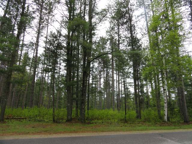 Nostalgic for the quiet days and ways of the Northwoods? Build your cabin for base camp or your year round home amongst the towering White Pines of this 4+ acre parcel bordered on the east by State Land. All highland, wooded and level Town of Plum Lake lot is just half a mile outside of the quaint town of Sayner. Not far from the Plum Lake Boat landing, Plum Lake Golf Course, library, museum, Sayner Pub, gas, numerous shops, baseball park, tennis courts and play ground. Close access to Snowmobile Trail 10 and thousands of acres of Northern Highland American Legion State Forest lands. Lot is guaranteed to perc and offers exceptional privacy for your new home. Additional Lots off Birch Springs Rd also available - Lots 2-4, each 5.13ac for $44,900; Lot 5-6 each 5.01ac for $39,900; Lot 7, 3.6ac for $29,900.
