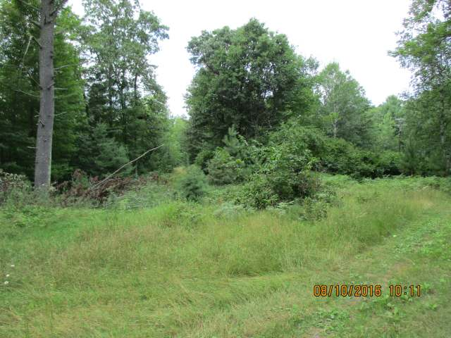 10 Acre 1000' frontage on McNutt lake. Property can be dived into 100' lots. Faces west, closet to town 35'deep lake. adjacent 5 acres with A-Frame and 500' frontage also available. Access road is in. Survey is being done. Zoned Rural Resiential.