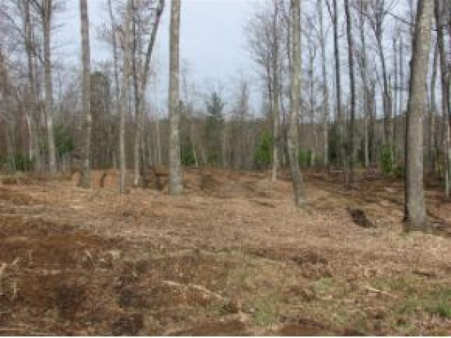 Beautiful wooded lot in Northern Lights Subdivision. Lot has been German Forested and is ready to build on. Great for Walk out lower level or typical ranch style home. Gorgeous hillside lot with endless possibilities. Western sunset view. Priced below Fair Market Value.- Broker Owned