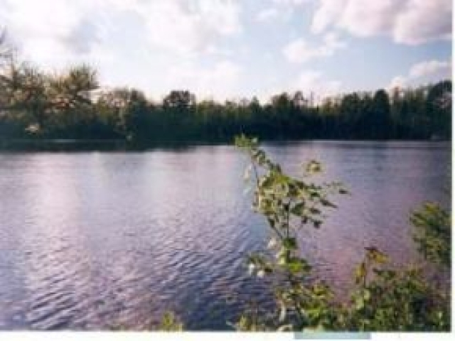 Nice quiet location with almost 4 acres and 289 of frontage on Headflyer Lake. Power and phone on site. Close to all recreation - Boating, snowmobiling, skiing, hunting and just enjoying the beautiful Northwoods! As a bonus, Headflyer Lake connects to the prestigious White Sand Lake a (1200+) acre body of water by a small channel. Seller will consider Land Contract.