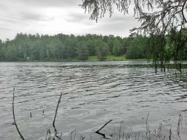 Total privacy, 4 wooded lots combined gives you over 17 acres and 340' of frontage on pristine Lucy Lake. Less than 10 miles from town. You can even Canoe into adjoining David Lake, giving you 2 quiet lakes that offer great bass fishing.