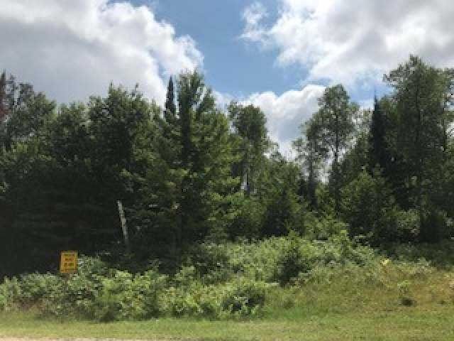 Want easy access to town while still enjoying the privacy of the woods? This 2.79-acre corner lot with beautiful hardwoods and electric already at the road provides just that. This parcel provides the perfect spot to build your new home. Located very close to Almon Recreation Area and only minutes from all the conveniences of Rhinelander.