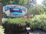 Unbelievable opportunity to own a no-maintenance condo on the Minocqua Chain. The interior has an Up North feeling with rustic twisted log railings, hickory cabinets and flooring in the kitchen and dining area. Open concept, large counter that overlooks the step-down living room and sliding door to your patio. Main floor also features a powder room, a fieldstone fireplace and a large entryway with access to the garage. The master suite features a large walk-in closet, an incredible master bathroom and sliding doors leading to your own private balcony where you can sit down with a cool drink and relax. There are two more bedrooms and a large bathroom upstairs as well as a large utility closet with washer/dryer connections to make life easier at the lake. Prime location within walking distance of quaint downtown Minocqua. Enjoy swimming or boating from the beach area with nice sand frontage.