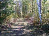 Nicely wooded vacant land which includes 1/2 of nice lake (Little Pine) - which is close to 20 acres - 18' deep. Located off of town road close to Eagle River, ATV & snowmobile trails at your doorstep as well as electric on lot. Also very private - excellent hunting and surrounded by other large acreage parcels. Not many properties like this anymore in the area!