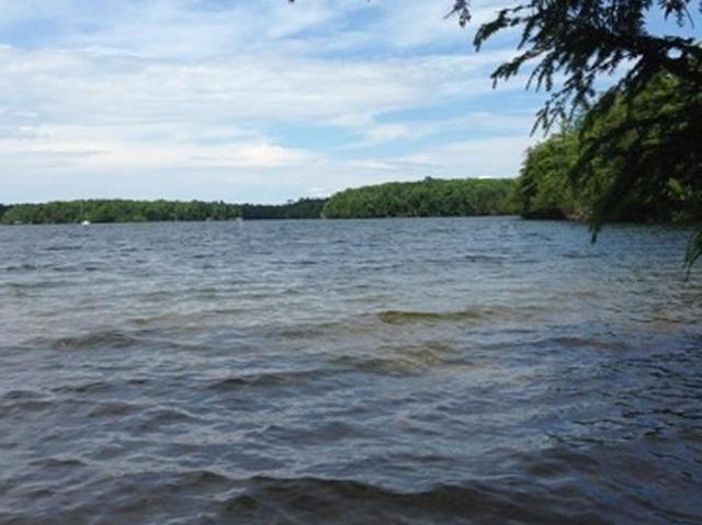Presque Isle Lake lot picture