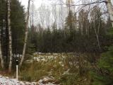 Are you looking for a lot for building your Up North Cabin? Here is your opportunity. Wooded 7.68 acres on Military Rd. Short drive to Three Lakes, Hiles, Eagle River. You are surrounded by all the finest Lakes the Northwoods has to Offer.