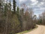This beautiful 8 Acre building lot is located just east of Rhinelander just a few minutes from town. The lot is nicely wooded with rolling terrain. There are multiple building sites and the building could be very privately located with a longer curvy driveway. The soils have been tested and electric is to the lot. This 8-acre property is located across the road from the Pelican River.