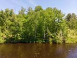 Looking for a great place to build on the water for under $25K? Look no further than this beautiful 1.17 acre parcel on 215-acre Sailor Creek Flowage, right in the heart of the Chequamegon National Forest in Fifield. 140' of frontage faces West for spectacular sunsets punctuated by a lovely island view. There's protected land across the lake so the view will always remain unspoiled. The soil test is favorable for a septic and basic covenants protect your investment down the road. Enjoy the privacy that comes with being at the end of a cul-de-sac. What a great place for your Northwoods cabin or retreat!