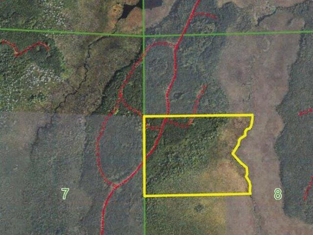 Minocqua Acreage, 46.93 acres of hunting and recreational land on Stone Lake Fire Ln. Located west of Minocqua this property is in the heart of the Northwood's. Mostly Aspen makes up the timber on this parcel with some pine and then lowlands as you get further east on the property until you reach a creek which is the east line. Close to some of the state's premier lakes, ATV and snowmobile trails, silent sports trails/park (Winter Park), and so much more. This is great recreational property with excellent habitat for white tail, grouse, turkey, etc. Enrolled in MLF Open to keep the taxes low, but don't worry as new legislation makes this DNR program more land owner friendly. Ask an agent for additional information.