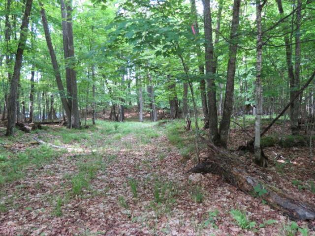 This is truly the perfect parcel of land to build your dream home located on Beaver Lake, Presque Isle, WI. This property offers large Maple trees and old growth forest leading down to the lakeshore, which is equally as impressive. This is a one of kind lot that is very Canadian like. You will be part of a private preserve and will be on a three lake chain. Beaver Lake is the smallest of the three being 68 acres in size so you will have all of the peace and tranquility of the Northwood's yet be able to access the other two lakes for cruising on your pontoon or boating with the kids. Great opportunity at an even greater piece of paradise! Lot is located close to Beaver Lake boat landing.