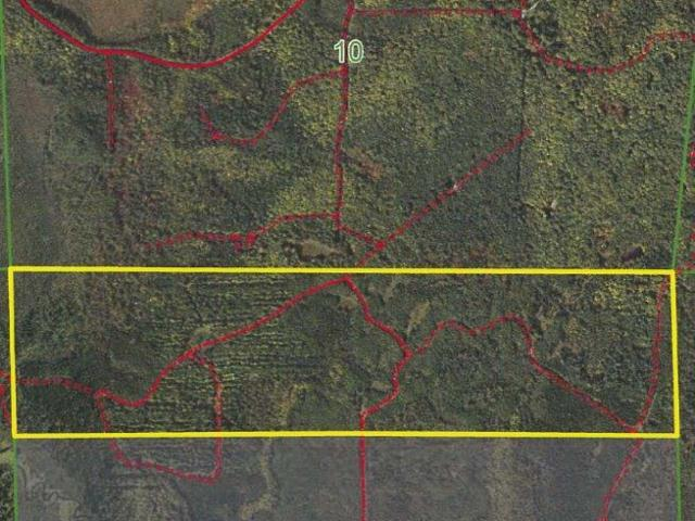 Minocqua Acreage, 160 acres of prime hunting and recreational land on Stone Lake Fire Ln. Located west of Minocqua this property is in the heart of the Northwood's. Nice mix of mostly upland with Pine and Aspen. Close to some of the state's premier lakes, ATV and snowmobile trails, silent sports trails/park (Winter Park), and so much more. This is great recreational property with excellent habitat for white tail, grouse, turkey, etc. Enrolled in MLF Open to keep the taxes low, but don't worry as new legislation makes this DNR program more land owner friendly. Ask an agent for additional information.
