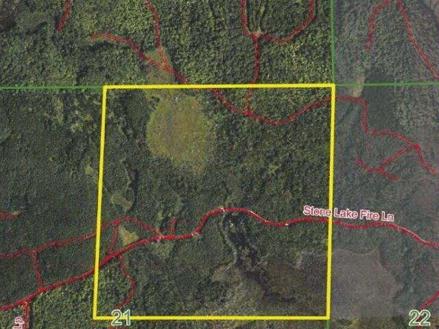 160 Acres in the Minocqua Acreage, prime hunting and recreational land on Stone Lake Fire Ln. Located west of Minocqua this property is in the heart of the Northwood's and on the snowmobile trail system. Nice mix of mostly upland Pine and Aspen as well as a creek and some open marsh land great for all kinds of habitat. Close to some of the state's premier lakes, ATV and snowmobile trails, silent sports trails/park (Winter Park), and so much more. This is great recreational property with excellent habitat for white tail, grouse, turkey, etc. Enrolled in MLF Open to keep the taxes low, but don't worry as new legislation makes this DNR program more land owner friendly. Ask an agent for additional information.