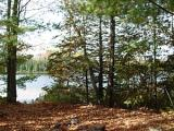 This is the perfect lot for building your dream home or just parking a trailer for weekend enjoyment! Located next to ATV and snowmobile trails! Perfect for the outdoor enthusiast! Camping, hunting and fishing all in one location! Located on Twin Lake in the township of Mercer this lot offers 2.5 wooded acres with 297 feet of shoreline. This lot boasts beautiful panoramic lake views and the property is adjacent to thousands of acres or Iron County Forest Land for your Northwood's enjoyment!