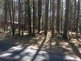 2 quiet lots in the heart of St. Germain! These lots are tucked away in the beautiful Holiday Estates area of St. Germain, with nearby shopping and access to snowmobile trails, winding bike trails and close proximity to two beautiful lakes. If you are looking for the perfect place to call home in the Northwoods, look no further than this gorgeous area. Each lot can be sold separately for $12,500, or together to combine into a .6-acre lot for $23,900!