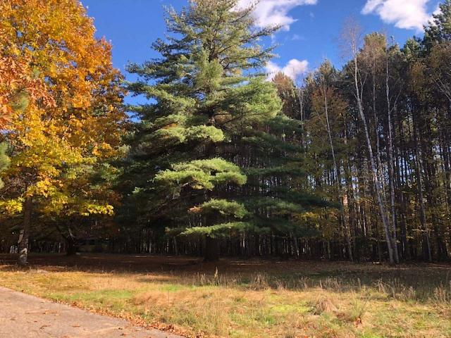 Nice wooded level building lot located close to Crescent Lake. Electric, gas, cable are at the lot. There is a nice open garden area with a wooded private back yard. Located close to Crescent Lake. Call today.