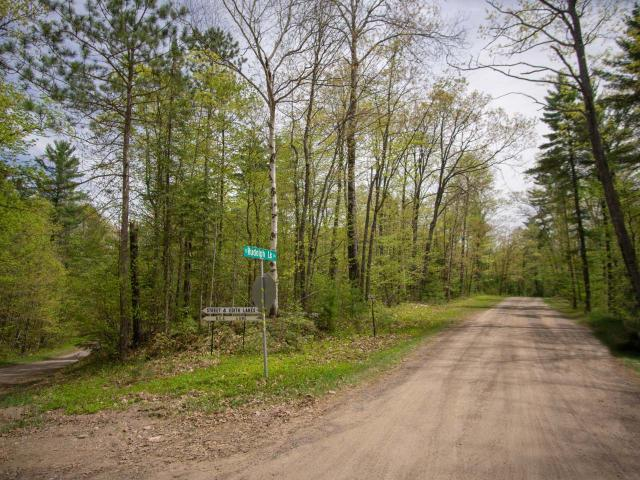 With approximately 1.8 acres and loaded with mature trees, this private lot is ready for your plans and ideas. Walk just a few hundred feet to Street Lake public access. All utilities are at lot line. Everything being out in the woods entails while being just a short drive from shopping, medical facilities, recreation, and hundreds of lakes.