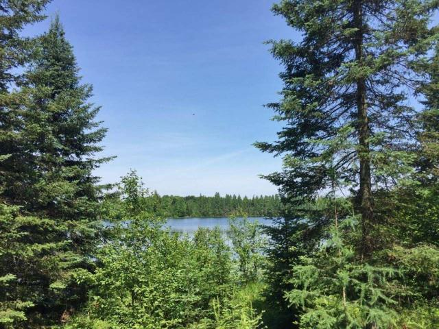 A special place in the Northwoods to call your own!! Here are 55.79 acres of wooded land with 1,252 feet of frontage on Davis Lake; which according to MLS records is an 18 acre lake that is 45 feet deep. The property is a great mix of upland with large trees and some lowland with mixed open and wooded terrain perfect for hunting, fishing and recreating. There is a 24x20 shell of a cabin that offers a great footprint with views to the lake, and a starting point for your project to finish and turn into a cottage or hunting cabin. There is great privacy and lots of opportunity to make this a truly remarkable property. Part of the land is north of Range Line Rd. and also borders Boyce Dr.; while the rest of the land is south of that and includes frontage on another smaller pond. If you love wildlife and privacy this is a property you need to see for yourself.