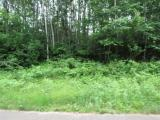 First time on the market, this 26.80 acre parcel east of Park Falls is tucked away off the beaten path, this would make an excellent hunting location or a future building site. Priced to sell, make this part of the Northwoods yours! Awesome hunting property, Mature cedar swamp covers part of the property. Building site on Sand Cove Point Road, electric stubbed to site under road.
